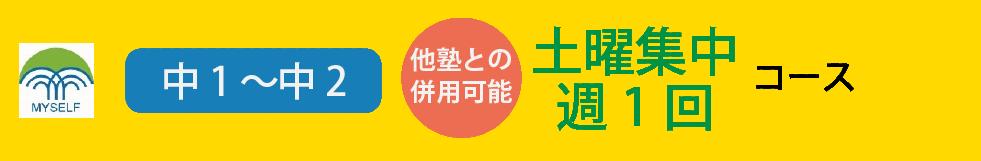 中1~中土日集中週1回-3科コース
